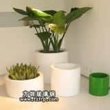 HP105圆形简约风格室内玻璃钢花盆