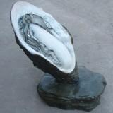 ZX-006仿真贝壳动物雕塑 贝壳雕塑造型