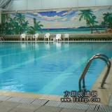 YC003玻璃钢室内游泳池价格 专业供应玻璃钢产品