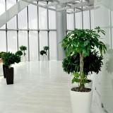 方圳玻璃钢花瓶款式新颖绿化高档大厦写字楼