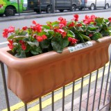 天津玻璃钢户外景观花槽