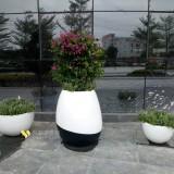 玻璃钢组合花盆立体绿化深圳大厦户外景观