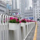 广州道路护栏绿化花盆