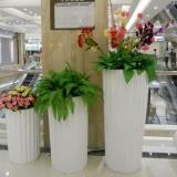 广州商场玻璃钢落地式花盆