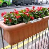 广东护栏隔离玻璃钢花盆