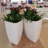 三角形玻璃钢花盆完美适用商场任意位置摆放