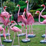 台湾玻璃钢园林动物雕塑