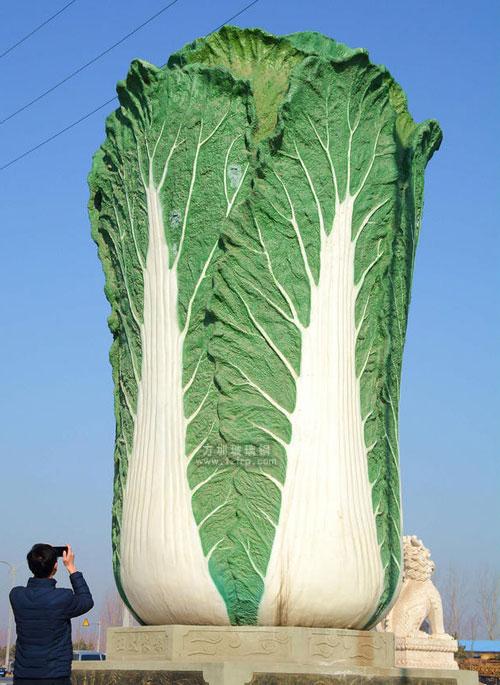 针对白菜的品种,纹理结构及合理性进行反复推敲